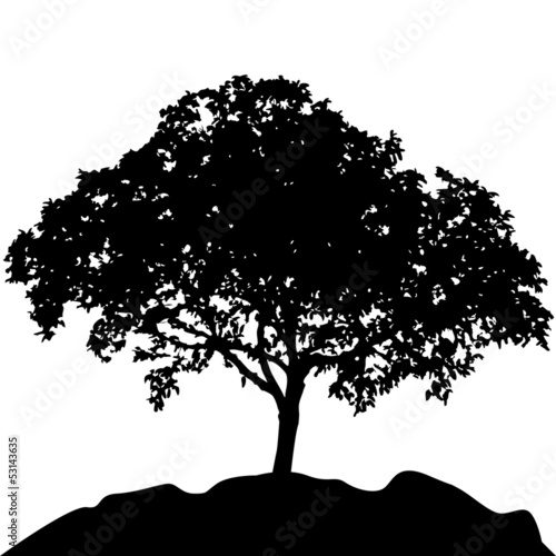 tree at hill silhouette vector - 53143635