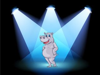 A stage with a hippopotamus standing in the middle