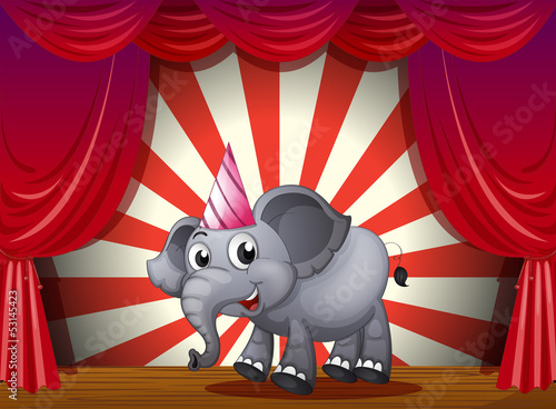 An elephant wearing a party hat at the stage