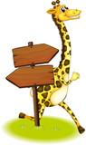A giraffe running at the back of a wooden arrow board