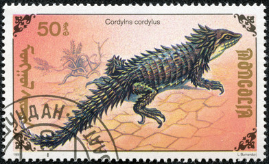 stamp printed by Mongolia, shows lizard