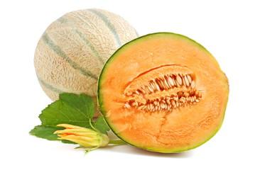 cantaloupe melonen