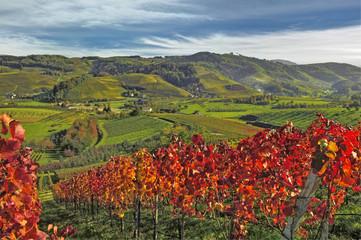 Oberkircher Herbst