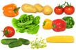 Gemüse 299