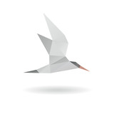 Seagull abstract isolated on a white backgrounds