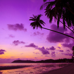 Tropical beach with palm trees at sunset, Thailand