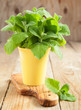 Fresh mint in cup