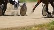 Equestrians running horses  on hippodrome
