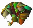 Постер, плакат: testa di pantera astratta che si compone con i colori