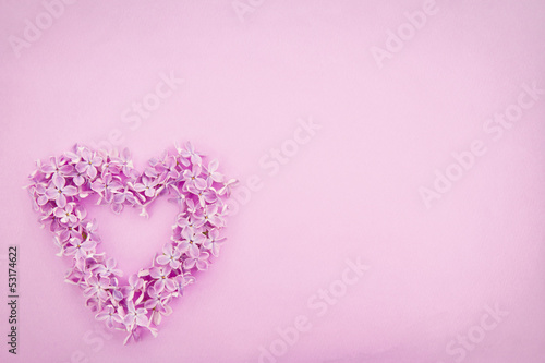 Lilac flower heart on textured background