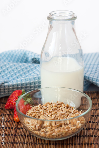 Germ cereal with bottle of milk