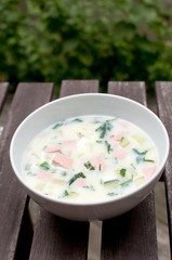 Russian traditional cold summer soup