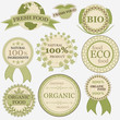 Set of eco bio natural labels in retro vintage style