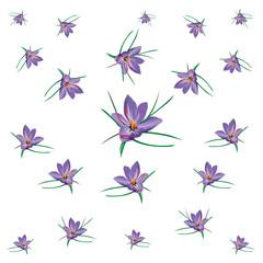 fiori di zafferano volanti