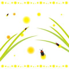 かわいい螢 夏のイラスト