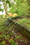 campsite, tents, fishing poles with reels and ocean in backgroun poster