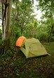 Camping in a tropical location with tents