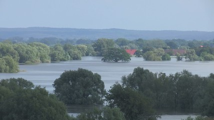 Überflutete Elbe