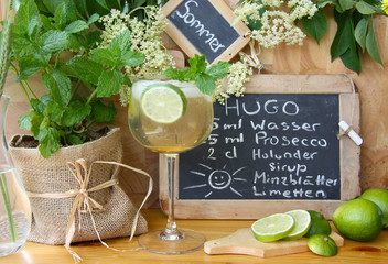 Hugo, das Sommergetränk