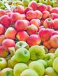 Fresh organic apples from Serbia