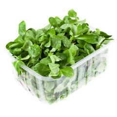 Container with freash salad leaves