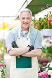Mature gardener in a greenhouse