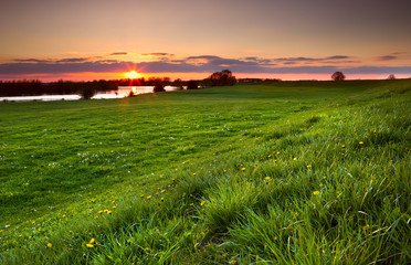 dramatic sunset over flowering meadow