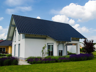 Immobilie Haus