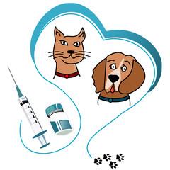 Vaccination animal
