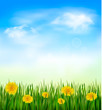 Nature background with green grass and flowers and blue sky. Vec