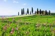 Obrazy na płótnie, fototapety, zdjęcia, fotoobrazy drukowane : Toskana Haus mit Blumen - Tuscany house and flowers 02