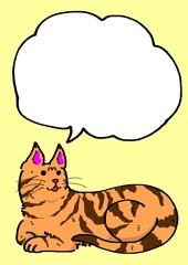 虎猫のメッセージカード