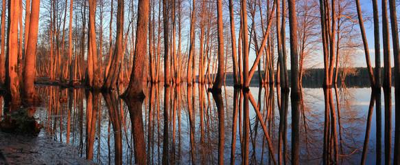 Весенний пейзаж ,Россия