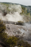 steam escaping from craters in Waiotapu