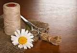 Scissors, cord and daisy flower