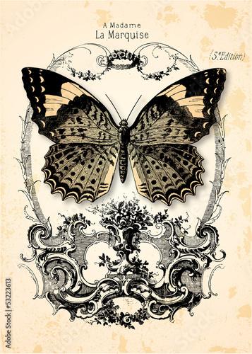 Keuken foto achterwand Vlinders in Grunge Fond papillon