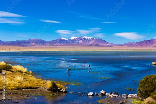 Papiers peints Lac / Etang Salar de Tara in Atacama, Chile, South America