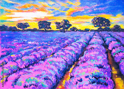 Beautiful lavender field at sunset.