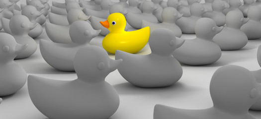 Rubber Duck Against The Flow