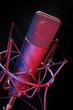 Studio Mikrofon mit Spinne