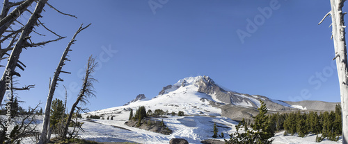 Mount Hood Oregon Panorama
