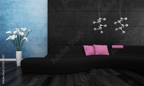 Modern black couch with pink pillows