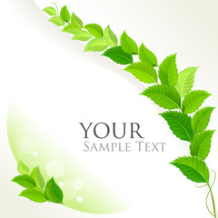 Fresh green leaves decorative background