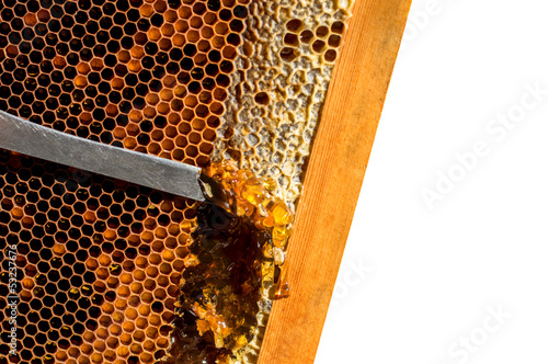 knife and honey