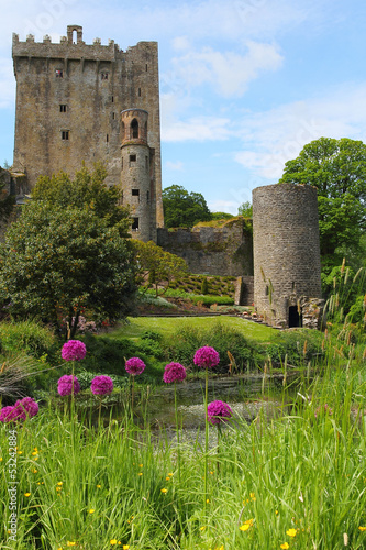 Blarney castle from the gardens