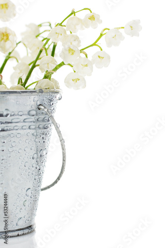 bunch of lily of the valley in a bucket