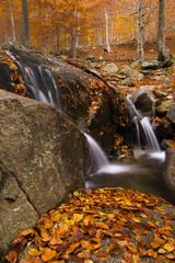 Pequeño salto de agua en otoño. Montseny.
