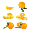 Set of orange fruits