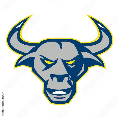 Texas Longhorn Bull Head Front
