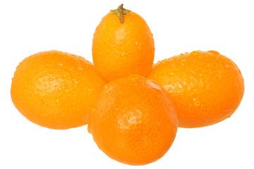 Group of fresh kumquat close u